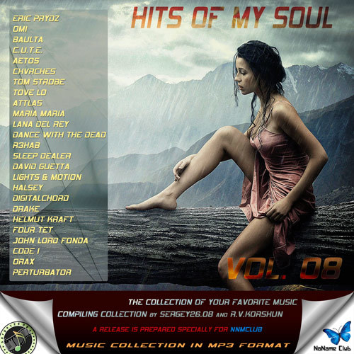 VA - Hits of My Soul (Vol. 1 - 11) 2016